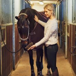 Экскурсия на конюшню для двоих